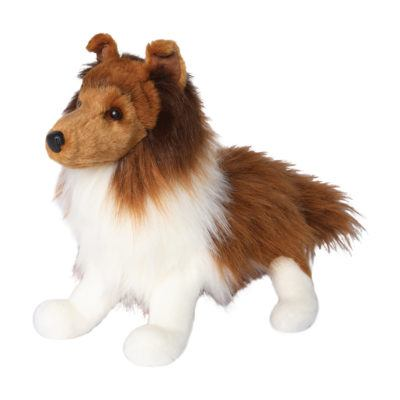 Collie Dog Companion