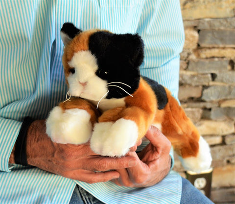 Small Calico Cat for People with Alzheimer's and Caregivers