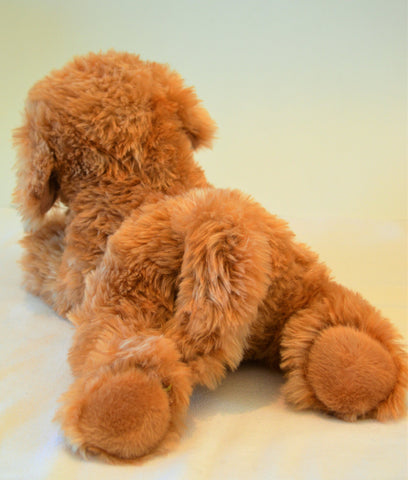 Goldendoodle for People with Alzheimer's and Caregivers