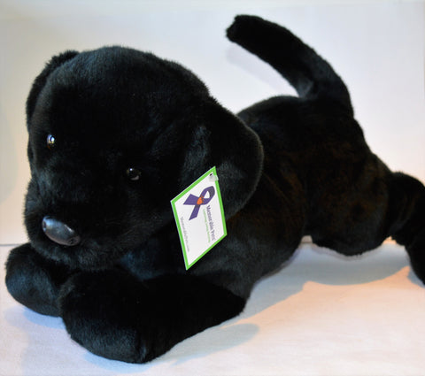 Large Black Lab Dog for People with Alzheimer's- (2 week delivery)