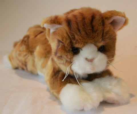 Small Ginger Tabby Cat for People with Alzheimer's and Caregivers