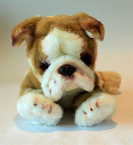 Small Bulldog Puppy for People with Alzheimer's and Caregivers