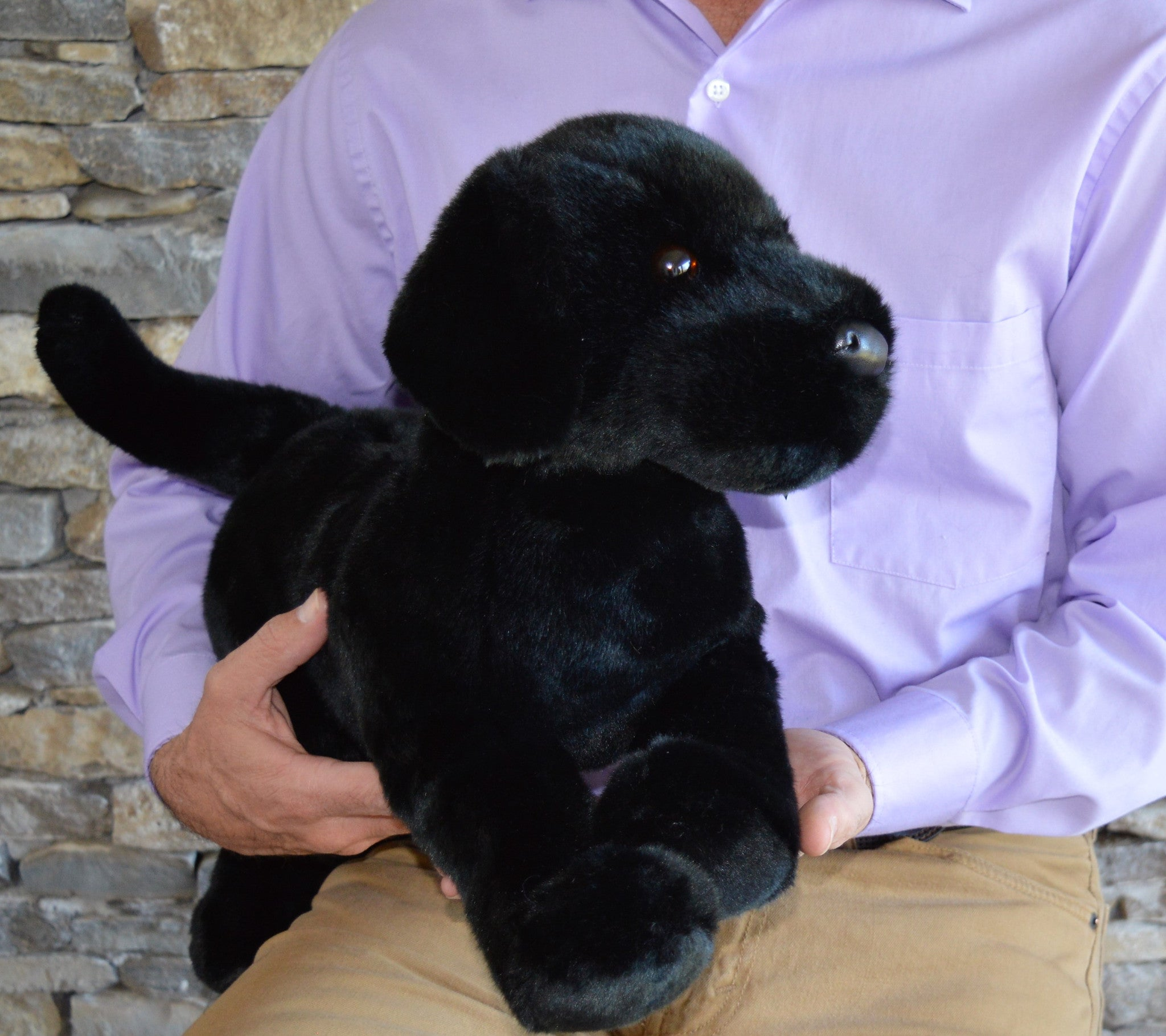 Extra Large Black Lab Dog For Seniors And People With Alzheimer S