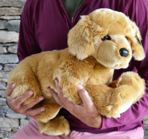 Large Golden Retriever Dog for People with Alzheimer's and Caregivers- (2 week delivery)