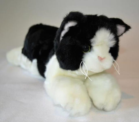 Small Black & White Cat for People with Alzheimer's and Caregivers