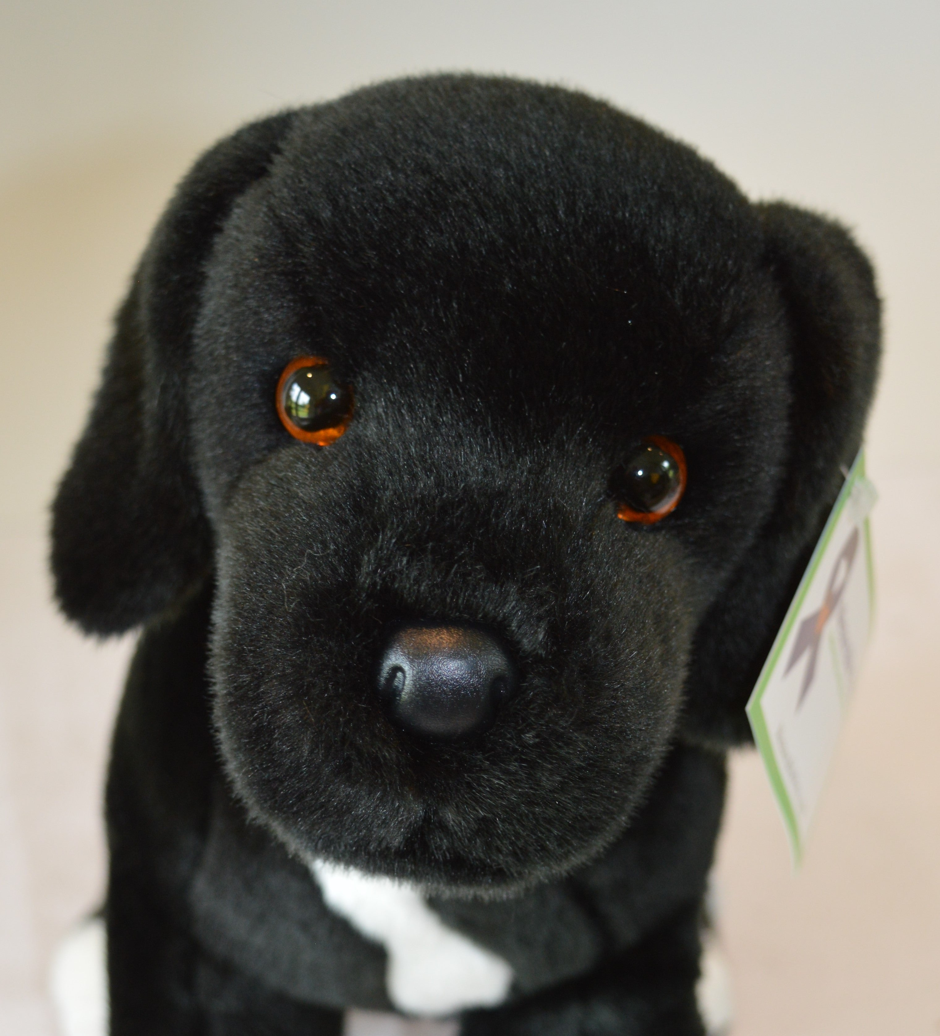 Black Lab Amp Pit Bull Mix Stuffed Toy For Seniors And