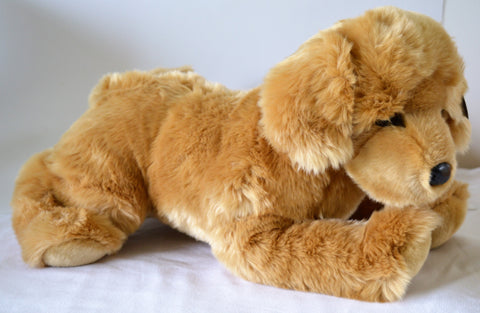 Large Golden Retriever Dog for People with Alzheimer's and Caregivers