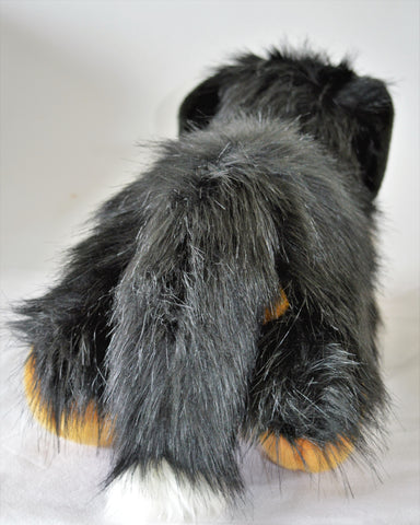 Extra Large Bernese Mountain Dog for People with Alzheimer's
