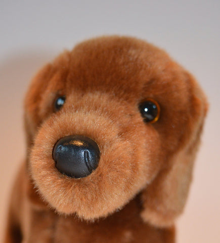 Mini Red Dachshund for People with Alzheimer's and Caregivers
