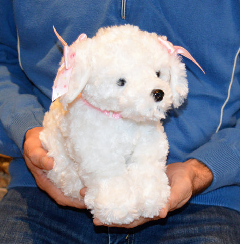 Poodle Puppy for People with Alzheimer's and Caregivers