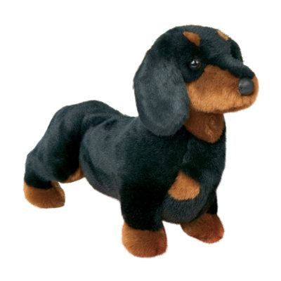 Dachshund Dog Companion