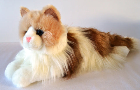 Long Haired Ragdoll Cat for People with Alzheimer's and Caregivers