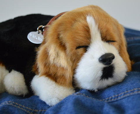 Breathable Beagle Puppy Companion Pet for People with Alzheimer's and Caregivers