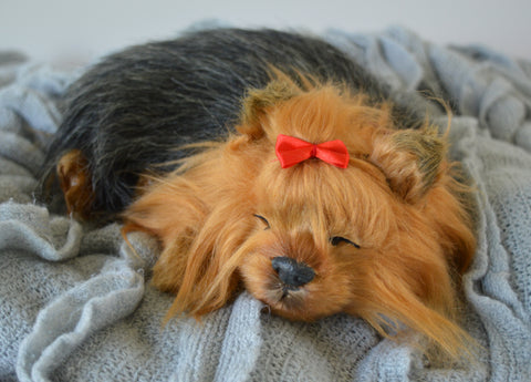 Breathable Yorkie Puppy Companion Pet for People with Alzheimer's and Caregivers