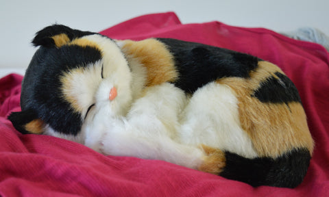 Breathable Calico Kitten Companion Pet for People with Alzheimer's and Caregivers