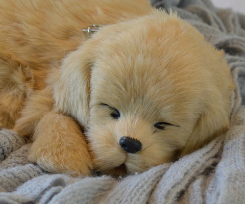 Breathable Golden Puppy Companion Pet for People with Alzheimer's and Caregivers