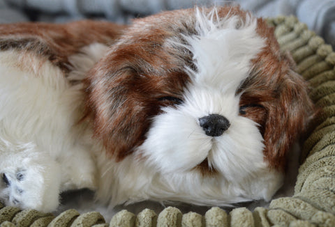 Breathable Shih Tzu Puppy Companion Pet for People with Alzheimer's and Caregivers