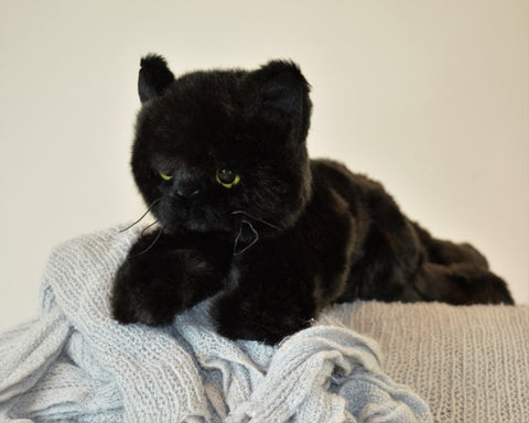 Small Black Cat for People with Alzheimer's and Caregivers