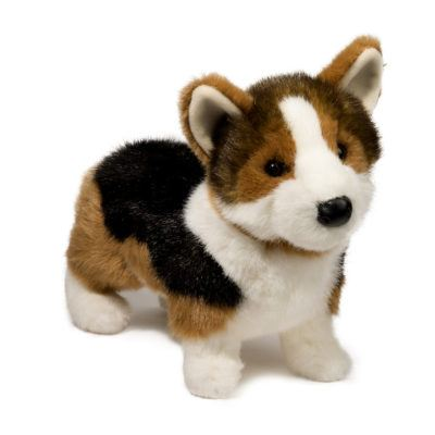 Corgi Tri-Color Dog Companion