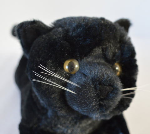 Black Kitty for People with Alzheimer's