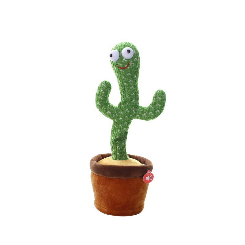 Funny Twisting Cactus - Little froging