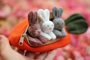 3 bunnies in carrot purse - Little froging