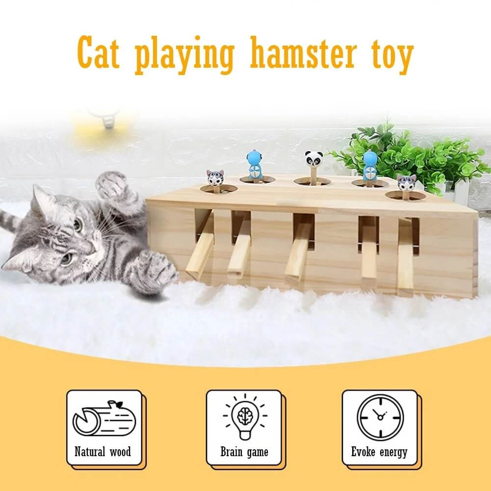 Interactive Wooden Cat Toy - Chica Sol
