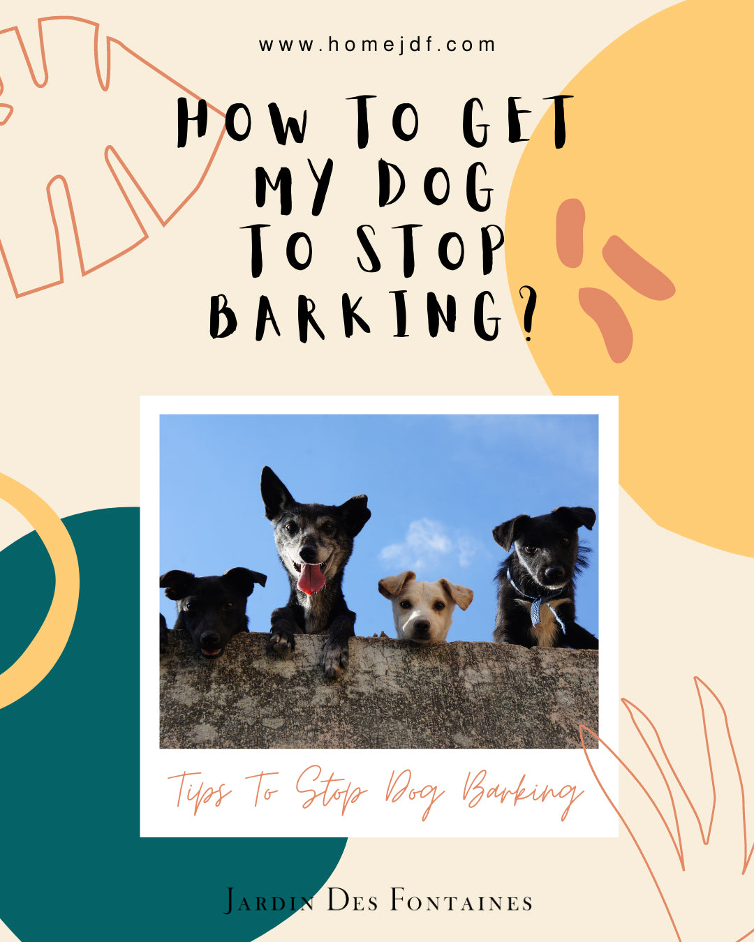 How To Get My Dog To Stop Barking? Tips To Stop Dog Barking
