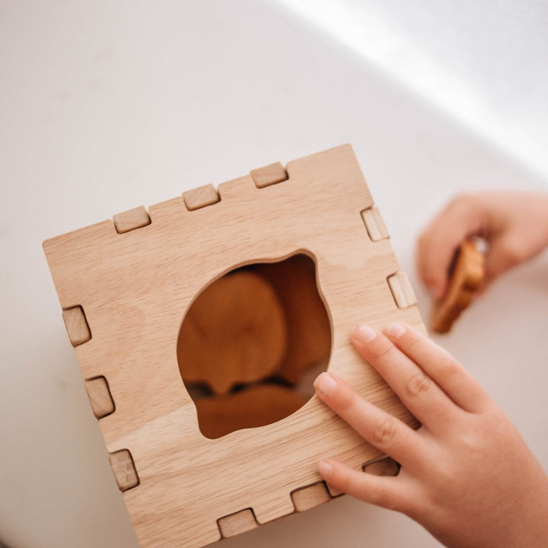 Fruit Box Puzzle | Montessori Range