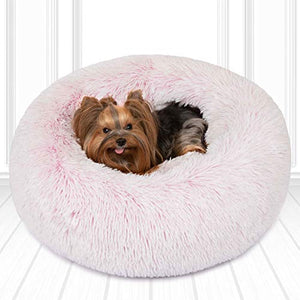Friends Forever Donut Dog/Cat Bed