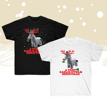 Load image into Gallery viewer, A Very Gaelic Storm Christmas T-Shirt