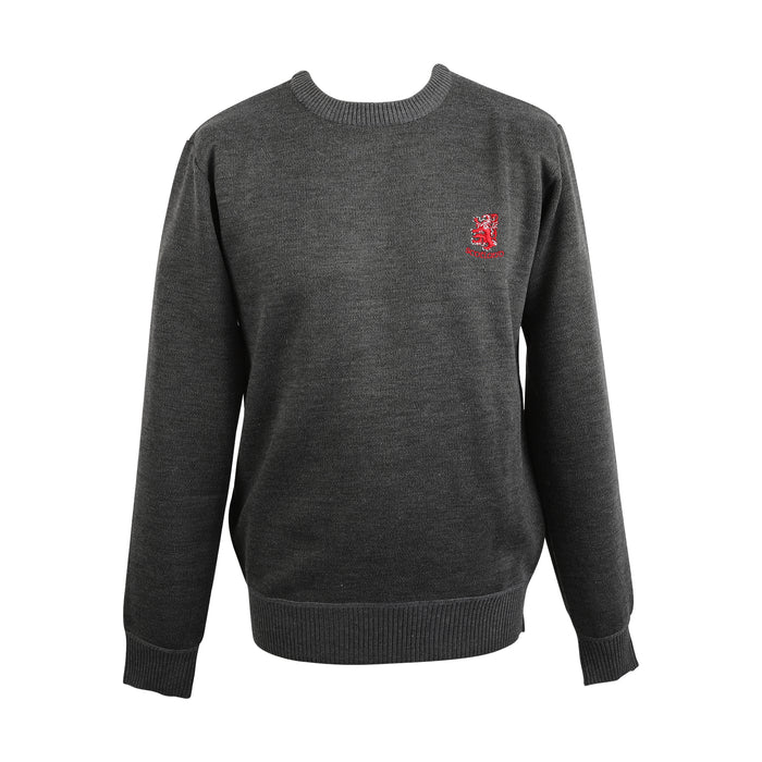 Men's Crew Neck Lion Jumper