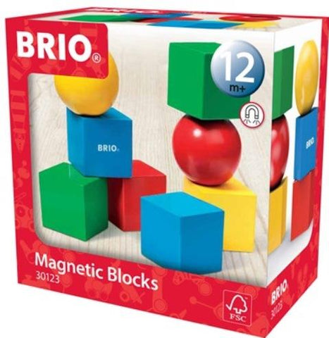Brio Magnetic Wooden Blocks