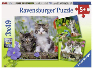 Ravensburger Puzzle 3 x 49 Piece, Tigers Kittens