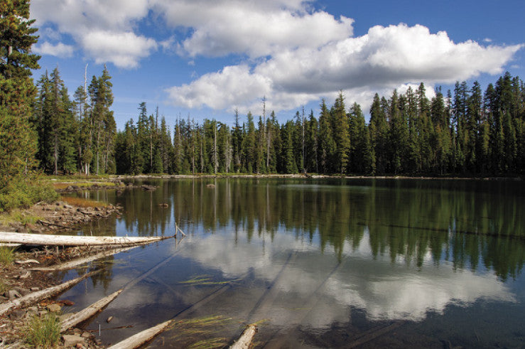 Sky Lakes Wilderness, OR