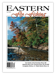Eastern Fly Fishing Fall 2005 (Print)