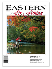 Eastern Fly Fishing Fall 2006 (Print)