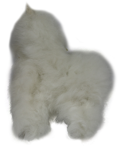 "9.5"" 100% Alpaca Fur Toy"