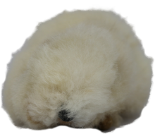 Load image into Gallery viewer, 100% Alpaca Fur Large Guinea Pig