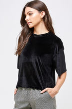 Load image into Gallery viewer, Velvet T-shirt