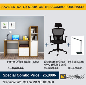 Combo-2B New (WFH Table + Chair+Lamp)
