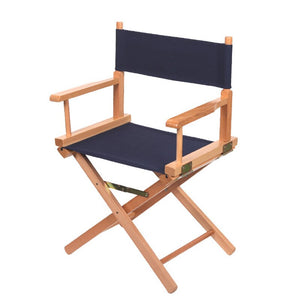 Directors style Chair Gardens or interior