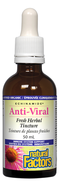 Natural Factors echinamide Anti-Viral Tincture 50ML