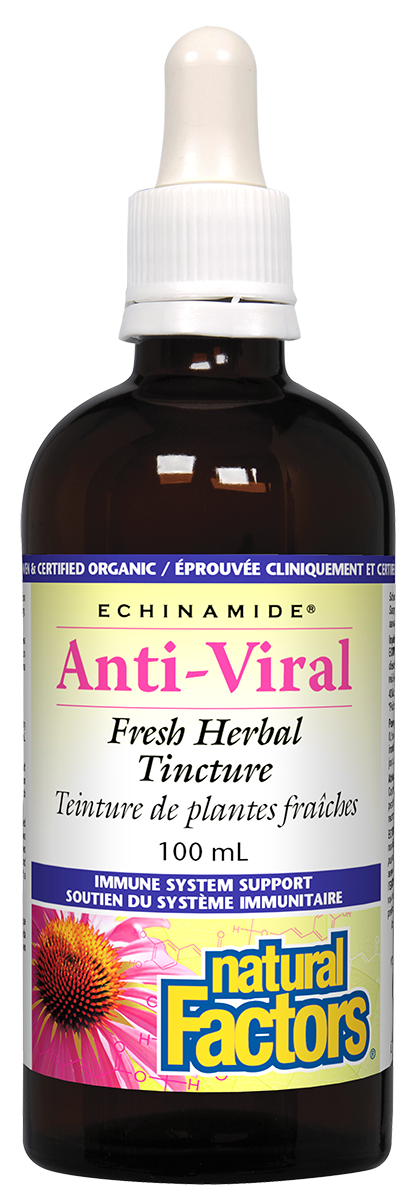 Natural Factors Echinamide Anti-Viral 100ML Tincture