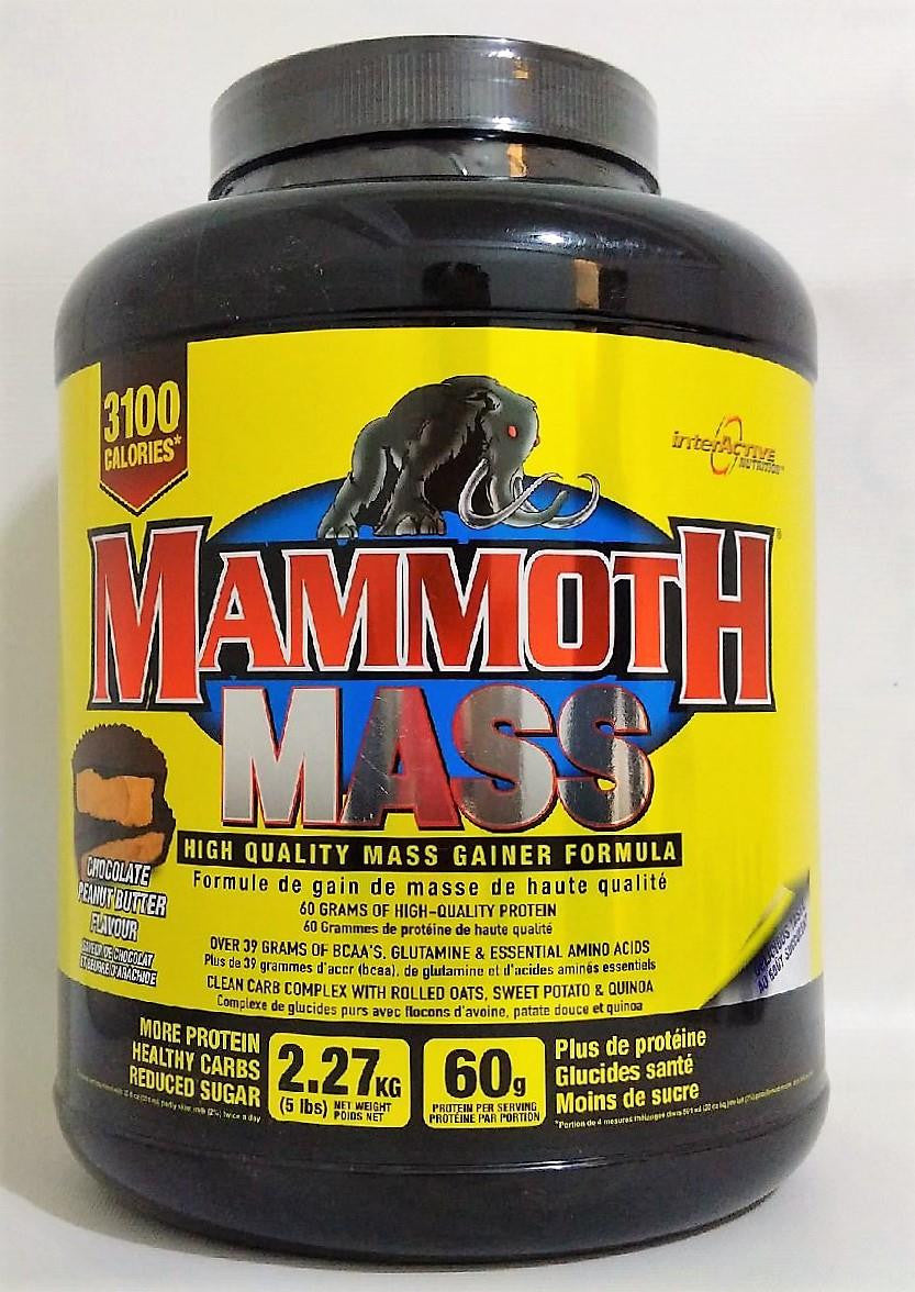 Mammoth Mass Peanut Butter Cup 5lbs