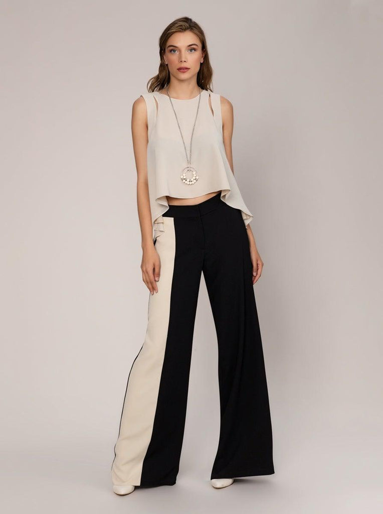 Beige FABRIC DETAILED Black PANTS