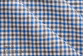 Ariston Leisure & Sport Collection Black And Blue Gingham Suiting - Rex Fabrics