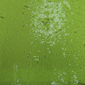 Green Heavily Sequin Embroidered Fashion Fabric - Rex Fabrics