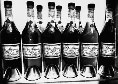 Bottles of Bas, Black & White