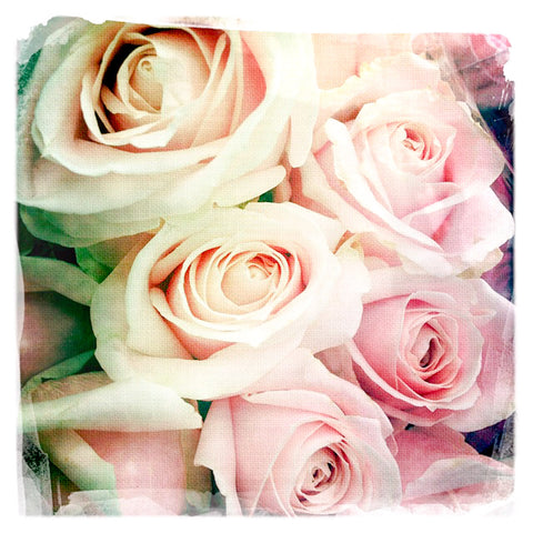 Soft Pink Rose Bouquet | Mini